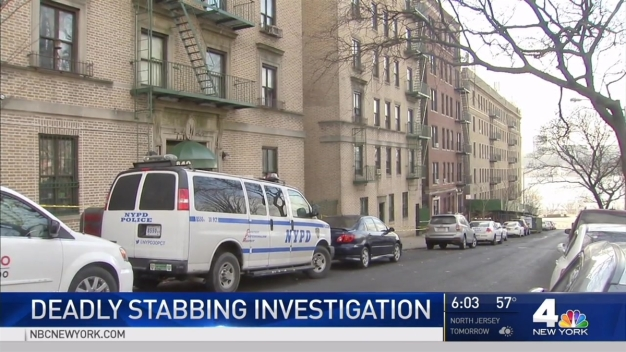 Woman Stabbed to Death in NYC Apartment: Police