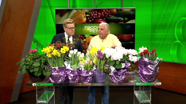 Produce Pete: Easter Flowers}