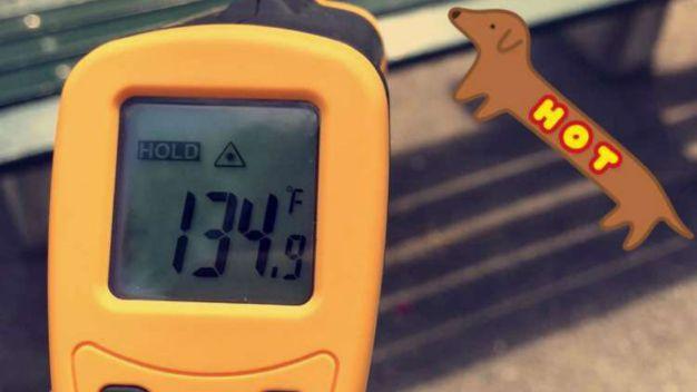 Blistering! Heat Wave Makes Central Park Sizzle