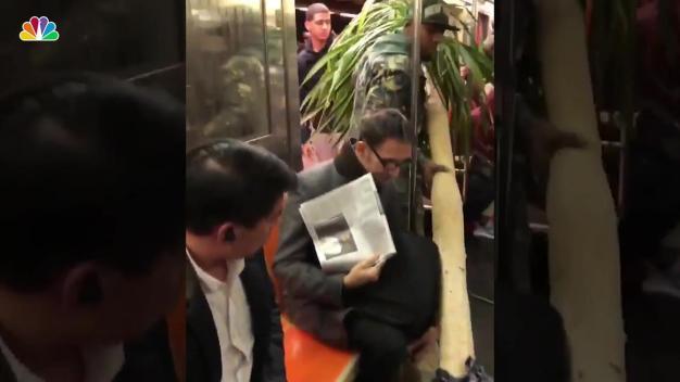 'Excuse Me': Polite Subway Rider Drags Huge Tree Through Car