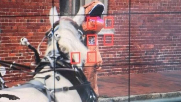 Woman in T-Rex Costume Triggers Horse Carriage Crash: Cops
