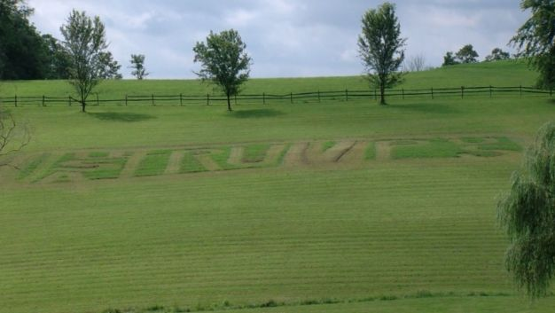 Man's Mow Job May Be World's Largest Pro-Trump Sign