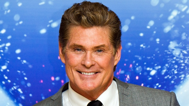 David Hasselhoff Puts Ritzy Estate Onto the Market