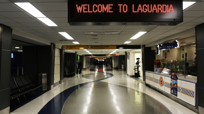 Plane Returns to LaGuardia After Hitting Birds, 2nd Bird Strike in 2 Days
