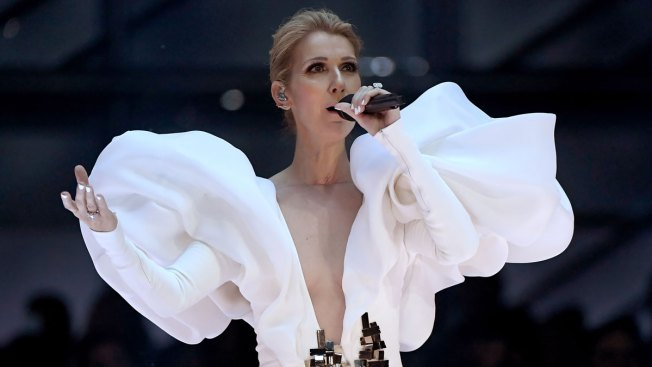 Céline Dion Cancels Las Vegas Concerts to Undergo Surgery