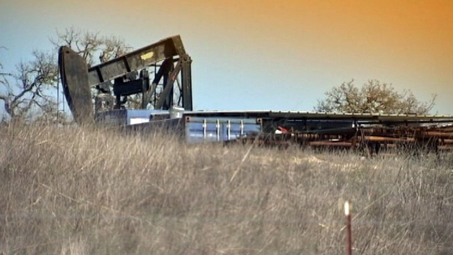 Lizard's Fate in Middle of Texas Oil Boom Remains in Limbo