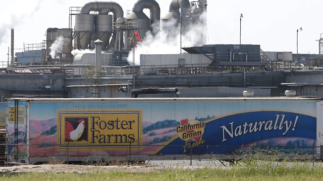 Police Investigating Foster Farms After Undercover Video