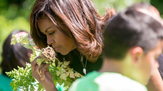 First Lady Going All-Out to Preserve White House Garden