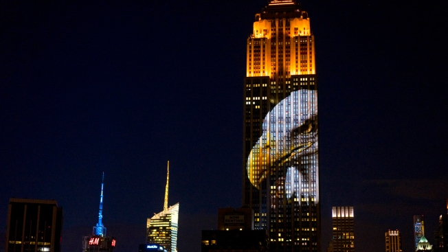 Empire State Building Shines Light on Endangered Species With Projection Show; Cecil the Lion Memorialized Too