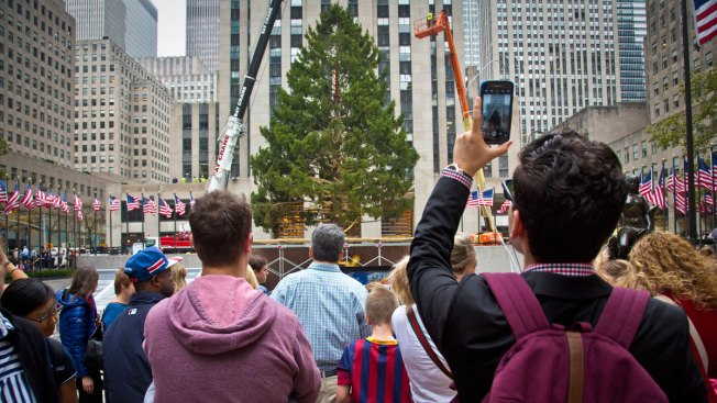 Seven Things You Never Knew About The Rockefeller Center Tree