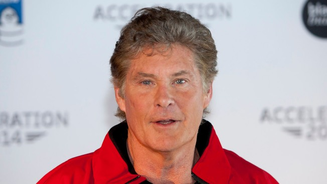 Did David Hasselhoff Officially Change His Name to David Hoff?