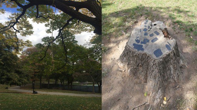 Hangman's Noose, Hitler Quote Found on Trees Inside Fort Greene Park