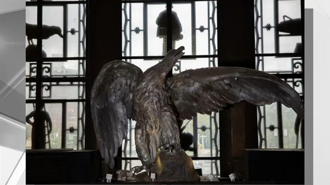 Brooklyn Public Library Reveals Results of Eagle Naming Contest