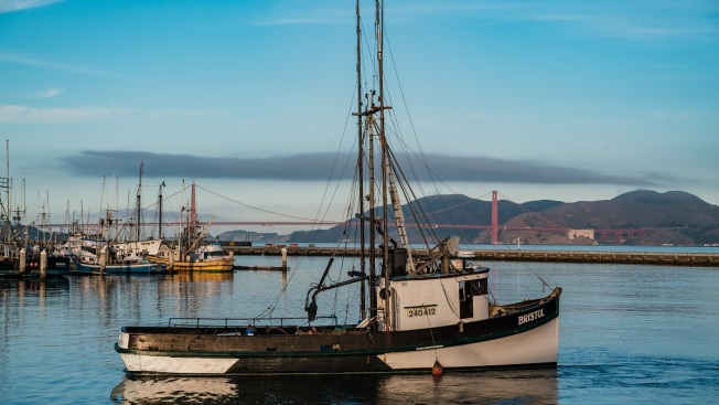 US Commerce Declares Fishing Disasters for 7 States