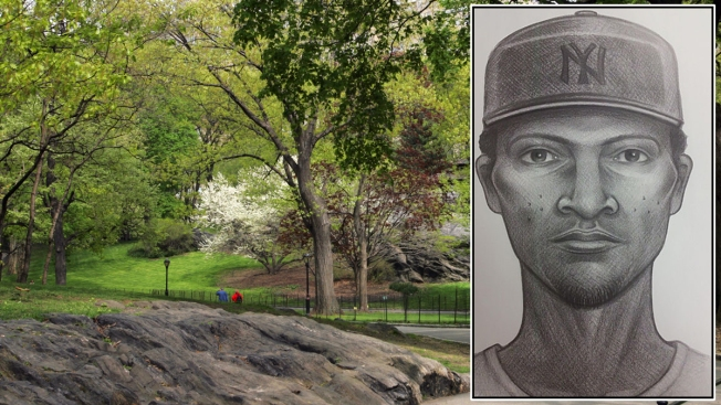 Man Counting Money on Log in Central Park Nearly Robbed at Knifepoint: NYPD