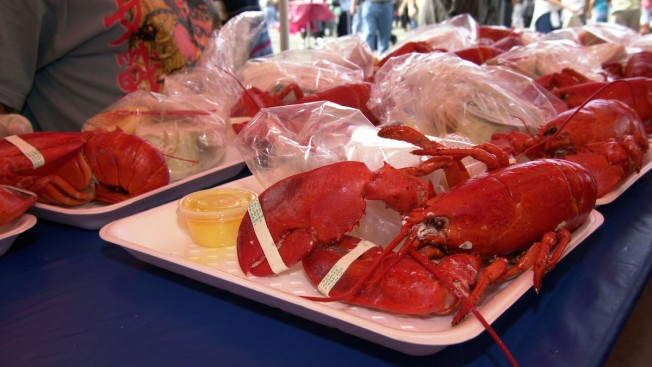 Lobster Shortage Sends Prices Rising 'Off the Charts': Report