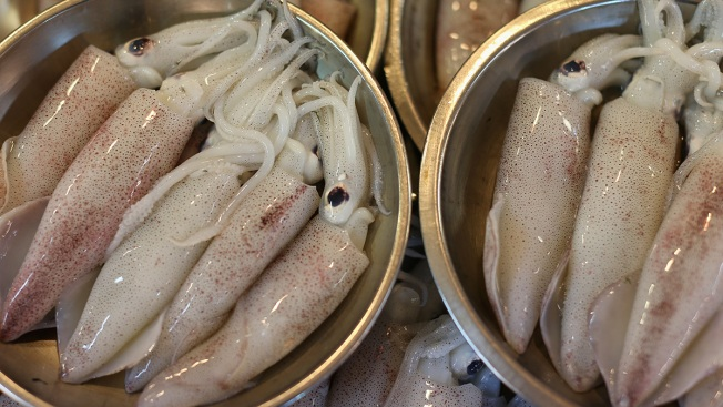 NY Father, Son Charged With Selling More Than 100,000 Pounds of Squid Mislabeled as Octopus