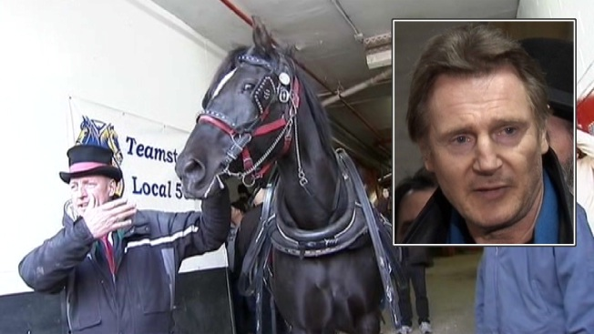 "Actor Liam Neeson: ""Can't Put a Dollar Amount"" on What NYC Carriage Rides Do for Tourism Industry"