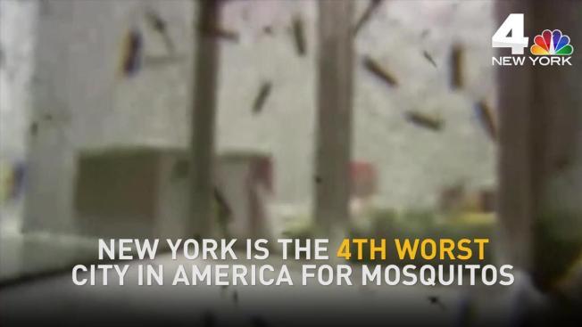 The 20 Worst U S Cities For Mosquitos Ecobuilding Pulse Health And Fitness Environmental Controls Washington Arlington Alexandria