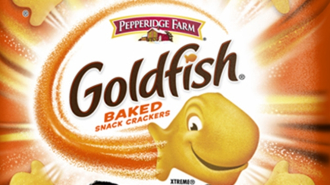 Image result for Goldfish crackers