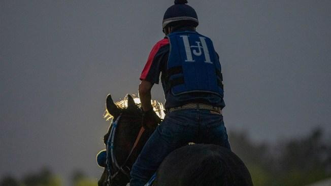 Santa Anita Horse Deaths: Workers Urge Legislators to Keep Track Open