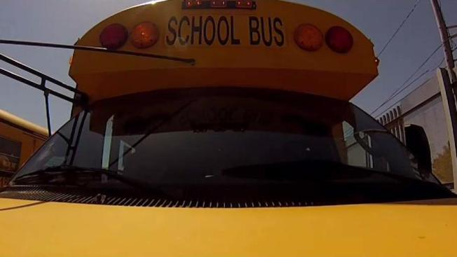 Seatbelts On School Buses Not Required In Most Of NY
