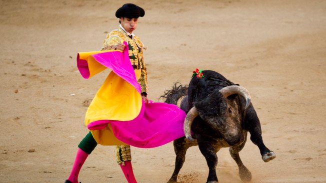 Bullfighter Fatally Gored on Spanish TV During Live Broadcast