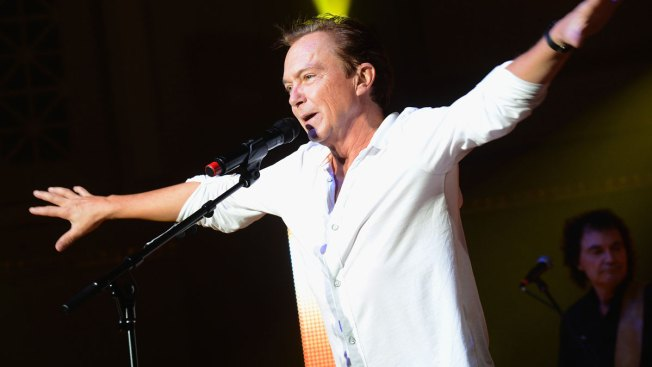 David Cassidy Never Had Dementia, Was Still Drinking in Last Days of Life