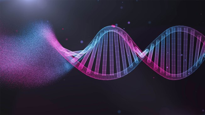 DNA Website's Privacy Policy Change Spells End to Cold Case Arrests