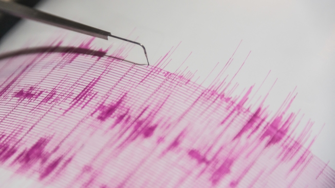 How Tracking Animals From Space Could Help Predict Earthquakes on the Ground