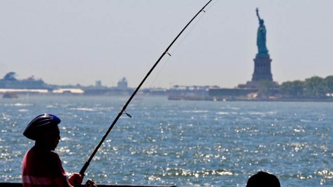 Global Warming May Make New York Feel Like Arkansas in 2080, Study Finds