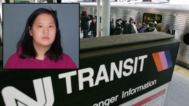 Stranger Throws 5-Year-Old Girl on NJ Transit Tracks: Police
