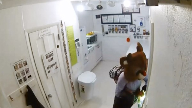 Colorado Police Seek 'Rudolph, the Red-Nosed Burglar'