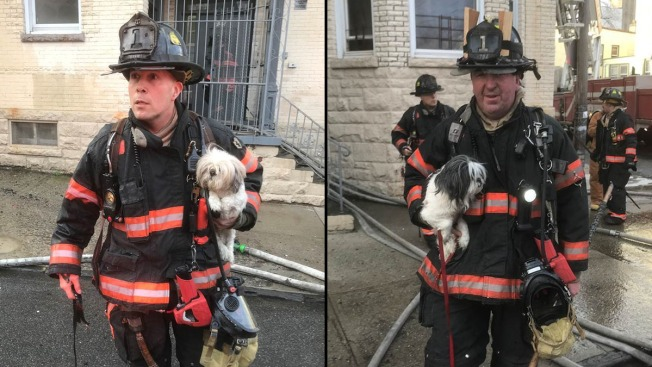 2 Dogs Rescued From Yonkers Apartment Fire; 2 Dozen People Displaced: Officials