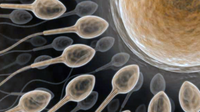 Couple Claims Sperm Bank Slipped Up