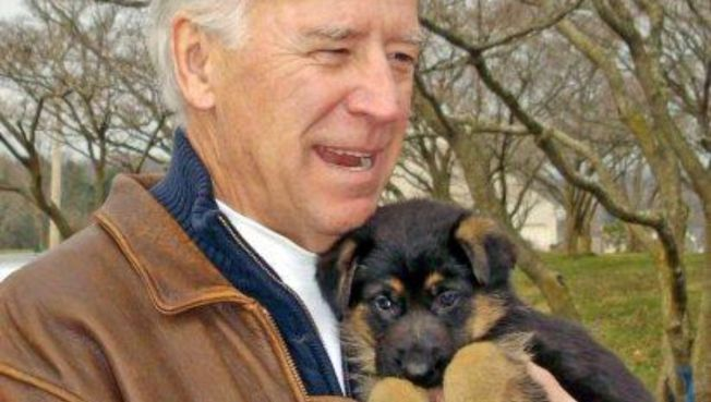 Bidens Name New Puppy