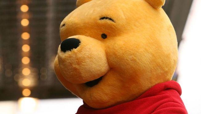 Pooh Bear Returns