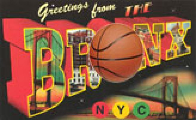 Bronx Nets? The Team's Suitors Span the Globe