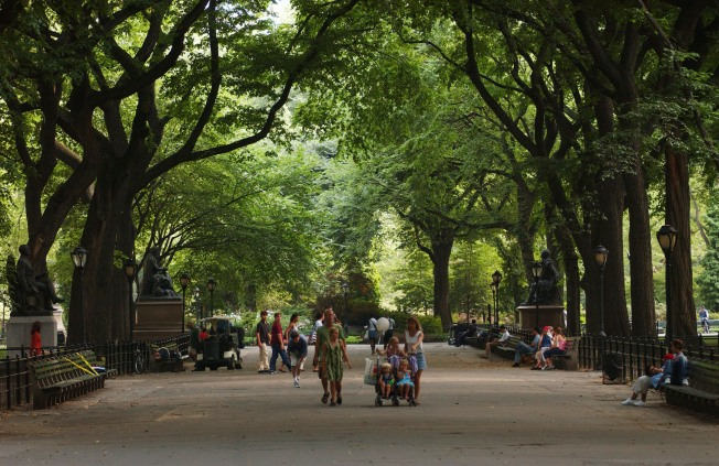 Crime Up Sharply in Central Park