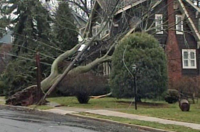Storm Leaves Live Wires, Closes NJ Schools