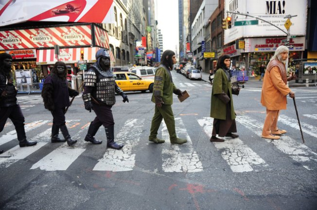 Apes Caught Invading New York City