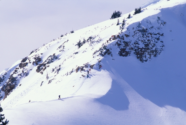 Skier Buried in Avalanche at Snowbird Resort Dies