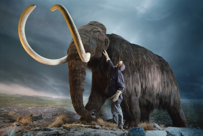 Woolly Mammoth 2.0