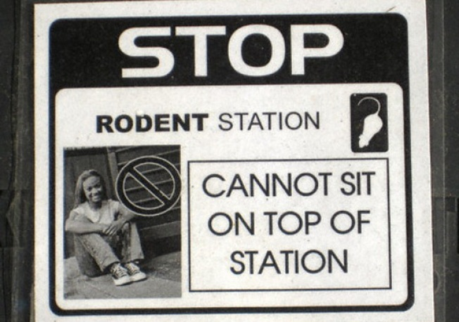 Greenpoint Wisdom: Don't Sit on the Rodent Station