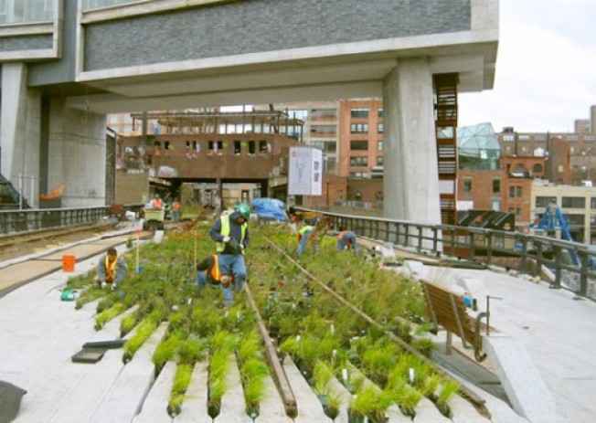 High Line Construction Chronicles: More Signs of Life