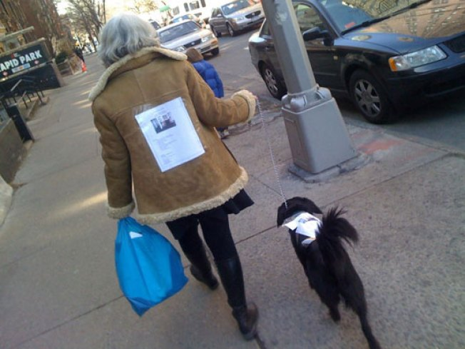 Park Slope Co-op Sales Go to the Dogs
