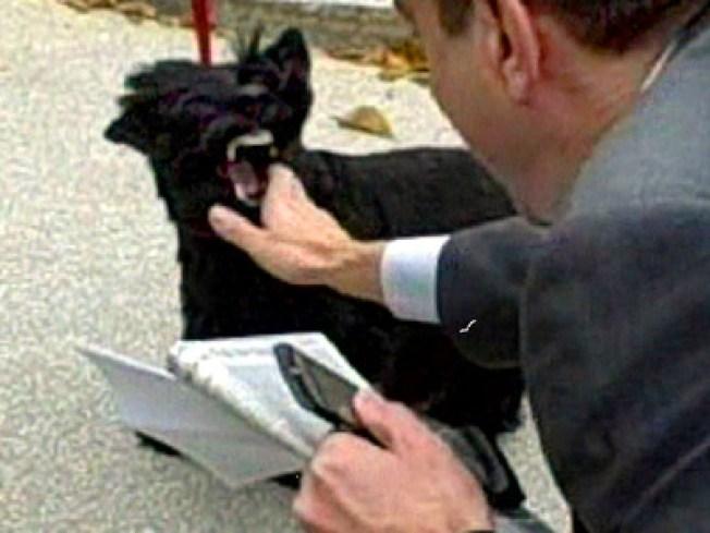 Barney Bites White House Reporter