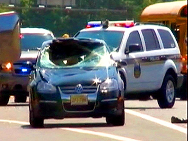 NJ State Trooper Dies After Being Struck by Car
