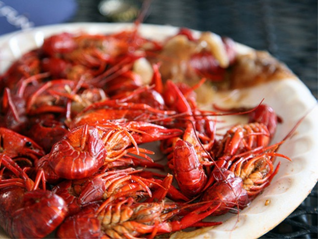 5/8-9: Crawfish Boil, Self's Annual Workout Bash…