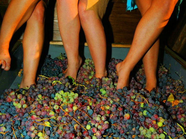 Women Crush Better -- City Winery Fête for Female Feats